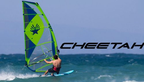 The Essentialstore is a windsurf specialist | EssentialStore nl